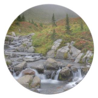 WA, Mt. Rainier National Park, Edith Creek Party Plates