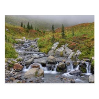 WA, Mt. Rainier National Park, Edith Creek Postcard