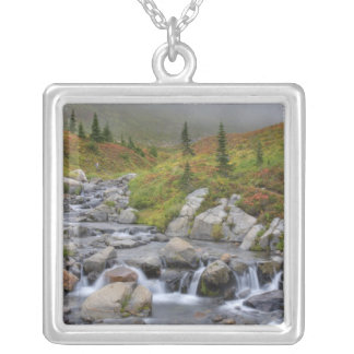 WA, Mt. Rainier National Park, Edith Creek Silver Plated Necklace