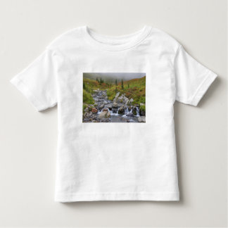 WA, Mt. Rainier National Park, Edith Creek Toddler T-Shirt