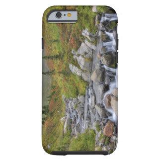 WA, Mt. Rainier National Park, Edith Creek Tough iPhone 6 Case