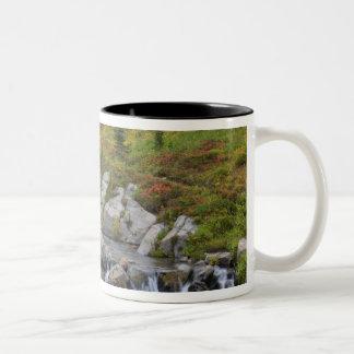 WA, Mt. Rainier National Park, Edith Creek Two-Tone Coffee Mug