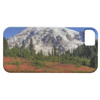 WA, Mt. Rainier National Park, Paradise Valley iPhone 5 Cover