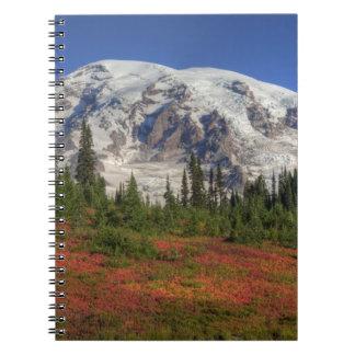 WA, Mt. Rainier National Park, Paradise Valley Notebook