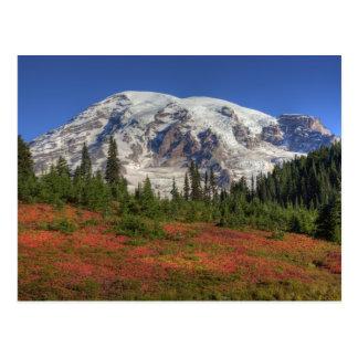 WA, Mt. Rainier National Park, Paradise Valley Postcard