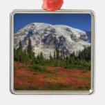 WA, Mt. Rainier National Park, Paradise Valley Silver-Colored Square Decoration