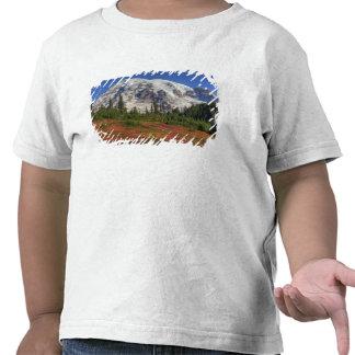 WA, Mt. Rainier National Park, Paradise Valley T-shirts