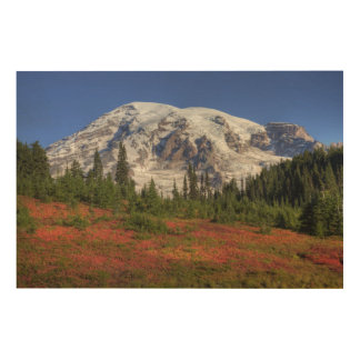 WA, Mt. Rainier National Park, Paradise Valley Wood Wall Art