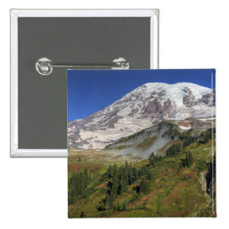 WA, Mt. Rainier National Park, view from the 15 Cm Square Badge