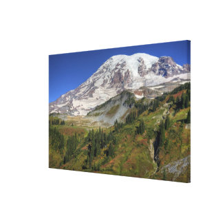 WA, Mt. Rainier National Park, view from the Stretched Canvas Prints
