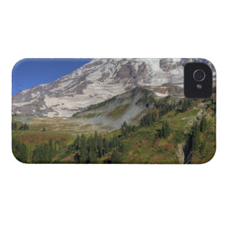 WA, Mt. Rainier National Park, view from the iPhone 4 Case-Mate Case
