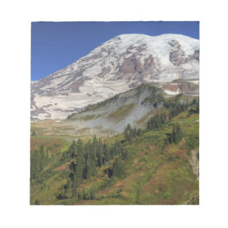 WA, Mt. Rainier National Park, view from the Notepads