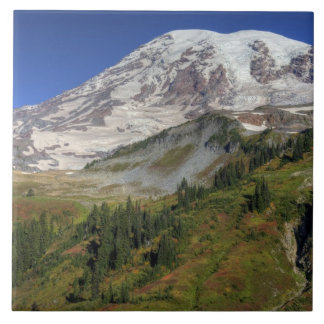 WA, Mt. Rainier National Park, view from the Large Square Tile