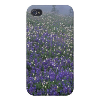WA, Mt. Rainier NP, Lupine and Bistort meadow iPhone 4/4S Case