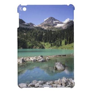 WA, Okanogan NF, Lewis Lake and Black Peak iPad Mini Case