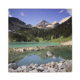 WA, Okanogan NF, Lewis Lake and Black Peak Wood Coaster