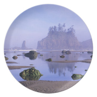 WA, Olympic National Park, Second Beach, Plates