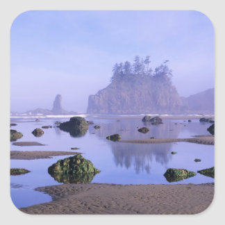 WA, Olympic National Park, Second Beach, Square Sticker