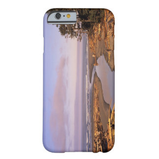WA, Olympic NP, Kalaloch Beach and Kalaloch Barely There iPhone 6 Case
