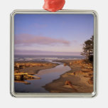 WA, Olympic NP, Kalaloch Beach and Kalaloch Silver-Colored Square Decoration