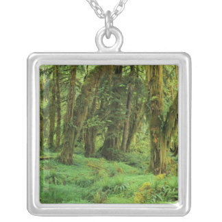 WA, Olympic NP, Quinault Rain Forest, moss Square Pendant Necklace