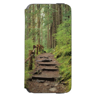 WA, Olympic NP, Sol Duc Valley, rainforest Incipio Watson™ iPhone 6 Wallet Case