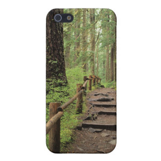 WA, Olympic NP, Sol Duc Valley, rainforest iPhone 5/5S Case