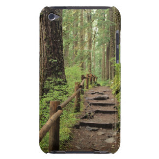 WA, Olympic NP, Sol Duc Valley, rainforest iPod Touch Case-Mate Case