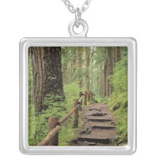 WA, Olympic NP, Sol Duc Valley, rainforest Silver Plated Necklace