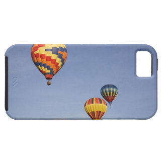 WA, Prosser, The Great Prosser Balloon Rally, 2 iPhone 5 Covers