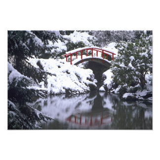 WA Seattle Moon bridge and pond after winter Photograph