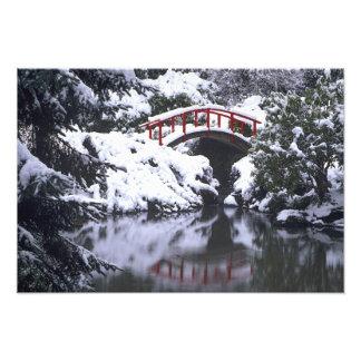 WA, Seattle, Moon bridge and pond after winter Photo Print