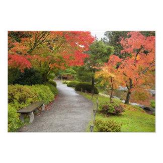 WA, Seattle, Washington Park Arboretum, 2 Photo Print