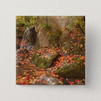 WA, Seattle, Washington Park Arboretum, Japanese 15 Cm Square Badge
