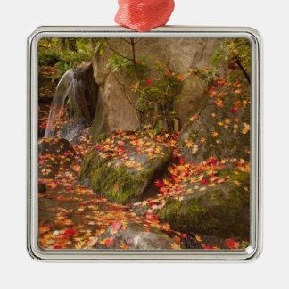 WA, Seattle, Washington Park Arboretum, Japanese Christmas Ornament