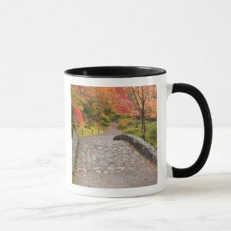 WA, Seattle, Washington Park Arboretum, Mug