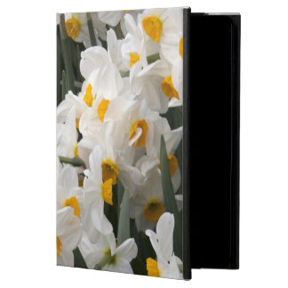 WA, Skagit Valley, Daffodil pattern iPad Air Case