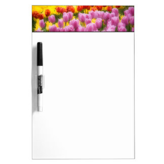 WA, Skagit Valley, Roozengaarde Tulip Garden, 2 Dry Erase Board