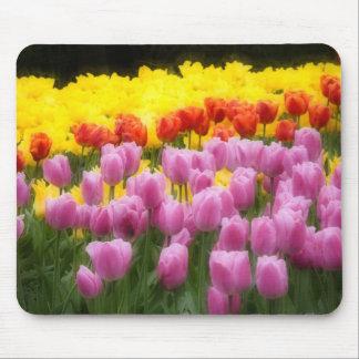 WA, Skagit Valley, Roozengaarde Tulip Garden, 2 Mouse Pad