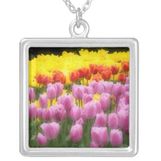 WA, Skagit Valley, Roozengaarde Tulip Garden, 2 Silver Plated Necklace