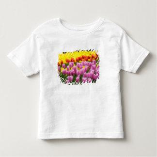 WA, Skagit Valley, Roozengaarde Tulip Garden, 2 Toddler T-Shirt