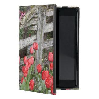 WA, Skagit Valley, Roozengaarde Tulip Garden, Case For iPad Mini