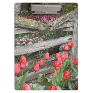 WA, Skagit Valley, Roozengaarde Tulip Garden, Clipboard