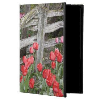 WA, Skagit Valley, Roozengaarde Tulip Garden, Cover For iPad Air