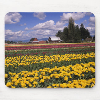 WA, Skagit Valley, Skagit Valley Tulip Mouse Pad