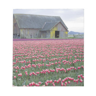 WA, Skagit Valley, Tulip Field and Barn Notepad