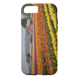 WA, Skagit Valley, Tulip fields in bloom, at iPhone 8/7 Case