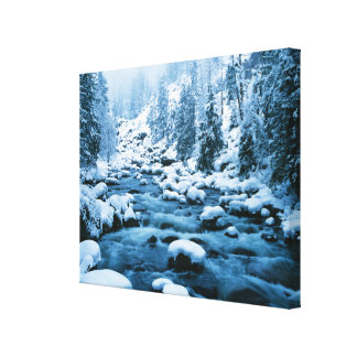 WA, Wenatchee National Forest, Cascade Canvas Print
