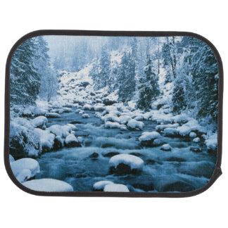 WA, Wenatchee National Forest, Cascade Car Mat
