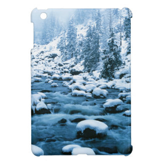 WA, Wenatchee National Forest, Cascade Cover For The iPad Mini